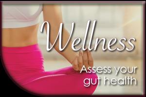gut health assess blog