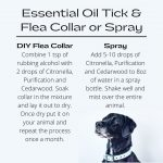 diy flea and tick collar boyds alternative health