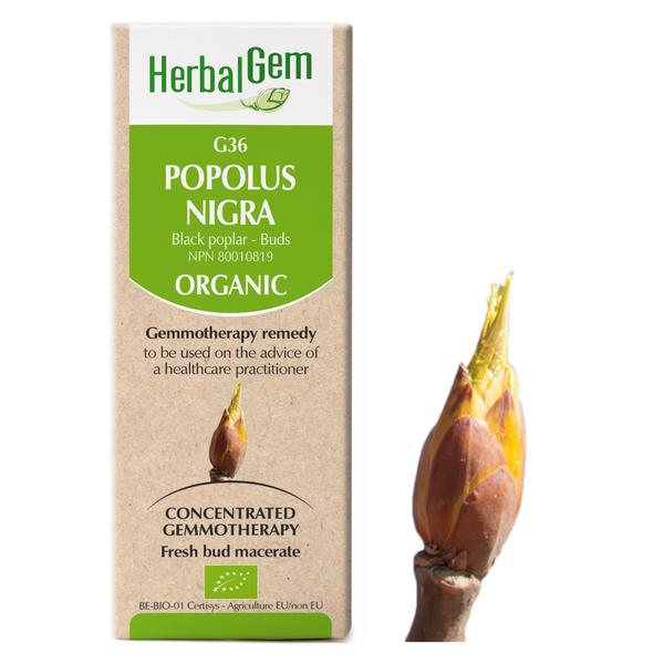 g36 black poplar boyds alternative health