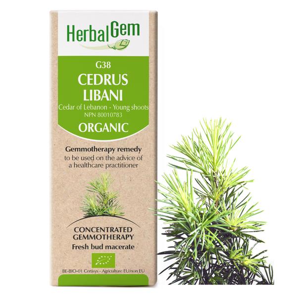 g38 cedar of lebanon boyds alternative health