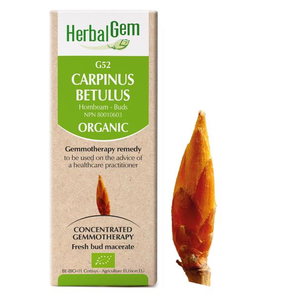 g52 hornbeam boyds alternative health