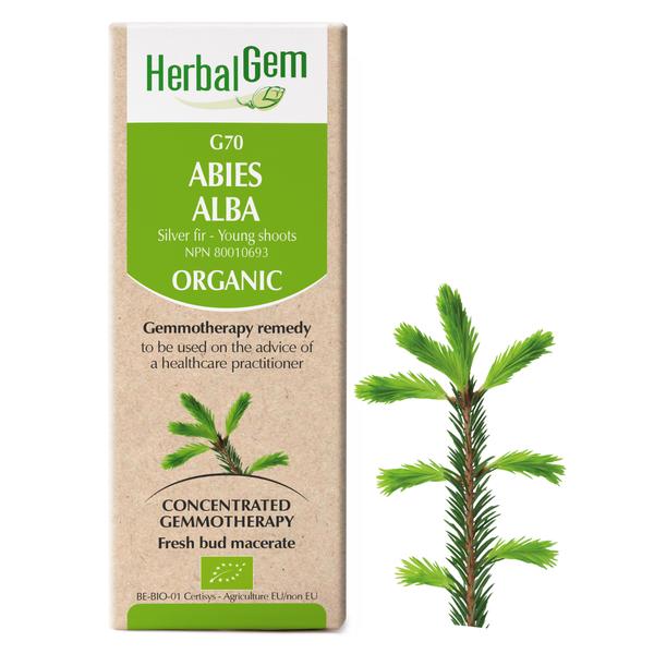g70 silver fir boyds alternative health