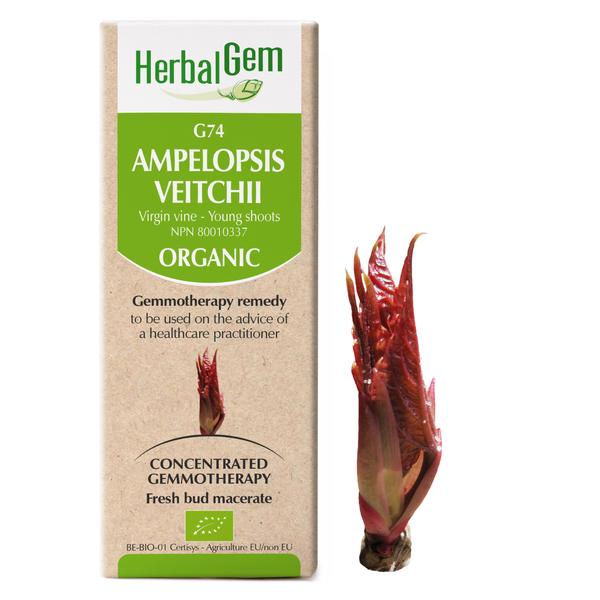 g74 virgin vine boyds alternative health