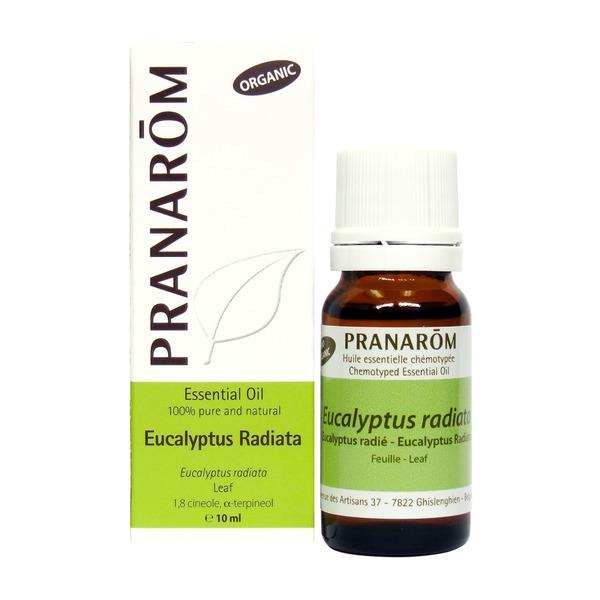 eucalyptus radiata pranarom 10ml boyds alternative health