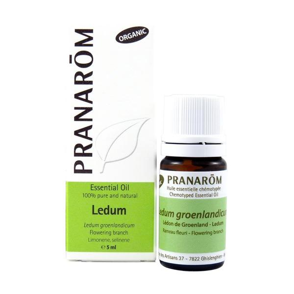ledum pranarom 5ml boyds alternative health