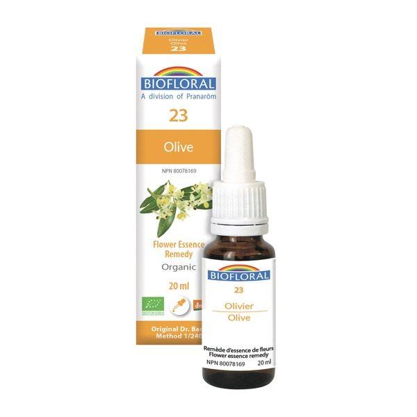olive 23 boyds alternative health