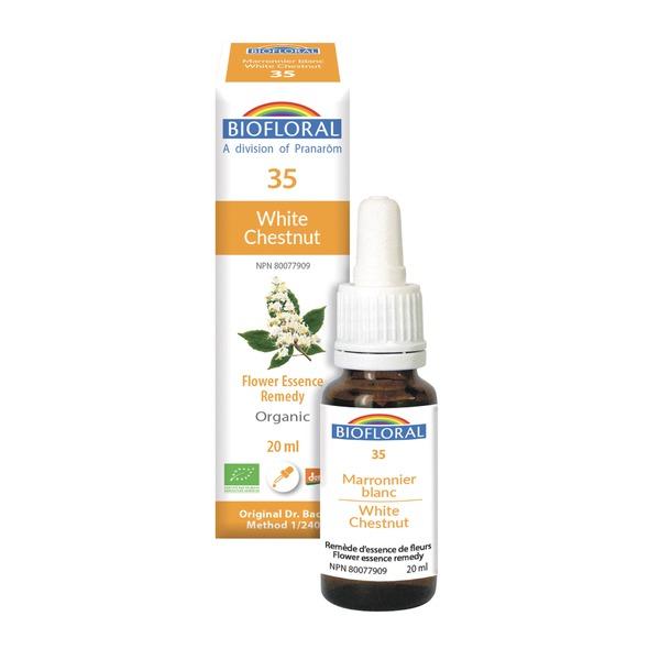 white chestnut 35 boyds alternative health